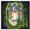 The Vines, Highly Evolved