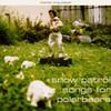 Snow Patrol, Songs for Polarbears