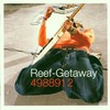Reef, Getaway