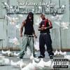 Birdman & Lil Wayne, Like Father, Like Son