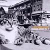 Billy Bragg & Wilco, Mermaid Avenue, Volume II