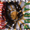 Ziggy Marley & The Melody Makers, Conscious Party