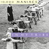 10,000 Maniacs, In My Tribe