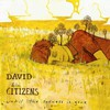 David & the Citizens, Until the Sadness Is Gone