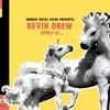 Kevin Drew, Broken Social Scene Presents: Spirit If...