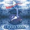 Liquid Mind, Ambience Minimus
