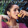 Julieta Venegas, Limon y sal