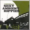 17 Hippies, Sexy Ambient Hippies