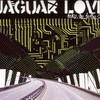 Jaguar Love, Take Me to the Sea