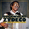 Buckwheat Zydeco, Lay Your Burden Down