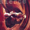 Coalesce, 0:12 Revolution in Just Listening