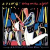 Sting, Bring On the Night