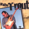 Walter Trout, Walter Trout
