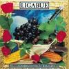Luciano Ligabue, Lambrusco, coltelli, rose & pop corn
