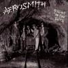 Aerosmith, Night in the Ruts