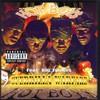 Hot Boy$, Guerilla Warfare