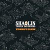 Shaolin Temple Defenders, Take It Slow