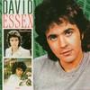 David Essex, David Essex