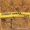 Cowboy Junkies, Acoustic Junk