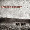 Abigail Washburn & The Sparrow Quartet, Abigail Washburn & The Sparrow Quartet