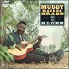 Muddy Waters, Muddy, Brass and the Blues