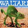 Waltari, Rare Species