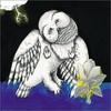 Songs: Ohia, The Magnolia Electric Co.