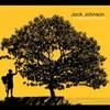 Jack Johnson, In Between Dreams