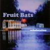 Fruit Bats, Echolocation