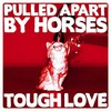Pulled Apart By Horses, Tough Love