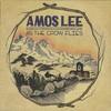 Amos Lee, As The Crow Flies