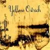 Yellow Ostrich, Yellow Ostrich
