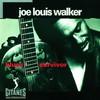 Joe Louis Walker, Blues Survivor
