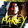 Bob Marley & The Wailers, Marley