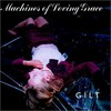 Machines of Loving Grace, Gilt