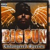 Big Punisher, Endangered Species