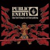 Public Enemy, The Evil Empire of Everything