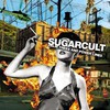 Sugarcult, Palm Trees and Power Lines