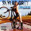 Skylar Grey, C'Mon Let Me Ride (feat. Eminem)