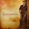 Blake Shelton, Based on a True Story...