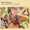 Bob Moses, When Elephants Dream of Music
