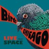 Birds of Chicago, Live From Space