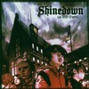 Shinedown, Us and Them