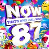 Various Artists, Now That's What I Call Music! 87