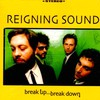 Reigning Sound, Break Up... Break Down