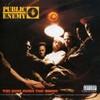 Public Enemy, Yo! Bum Rush the Show