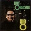 Roy Orbison, The Big O